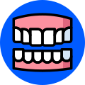 Flexible Denture
